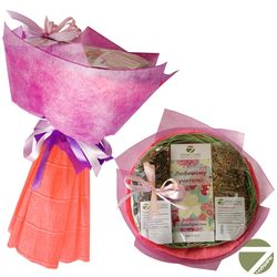 Букет из чая - Любимому учителю с благодарностью - Подарочный набор чайный букет купить за 1200 руб.