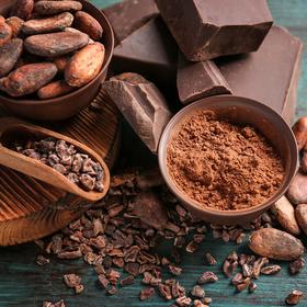Какао-бобы сырые ферментированные 50 гр купить за 130 руб.