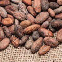 Какао-бобы сырые ферментированные 50 гр купить за 165 руб.